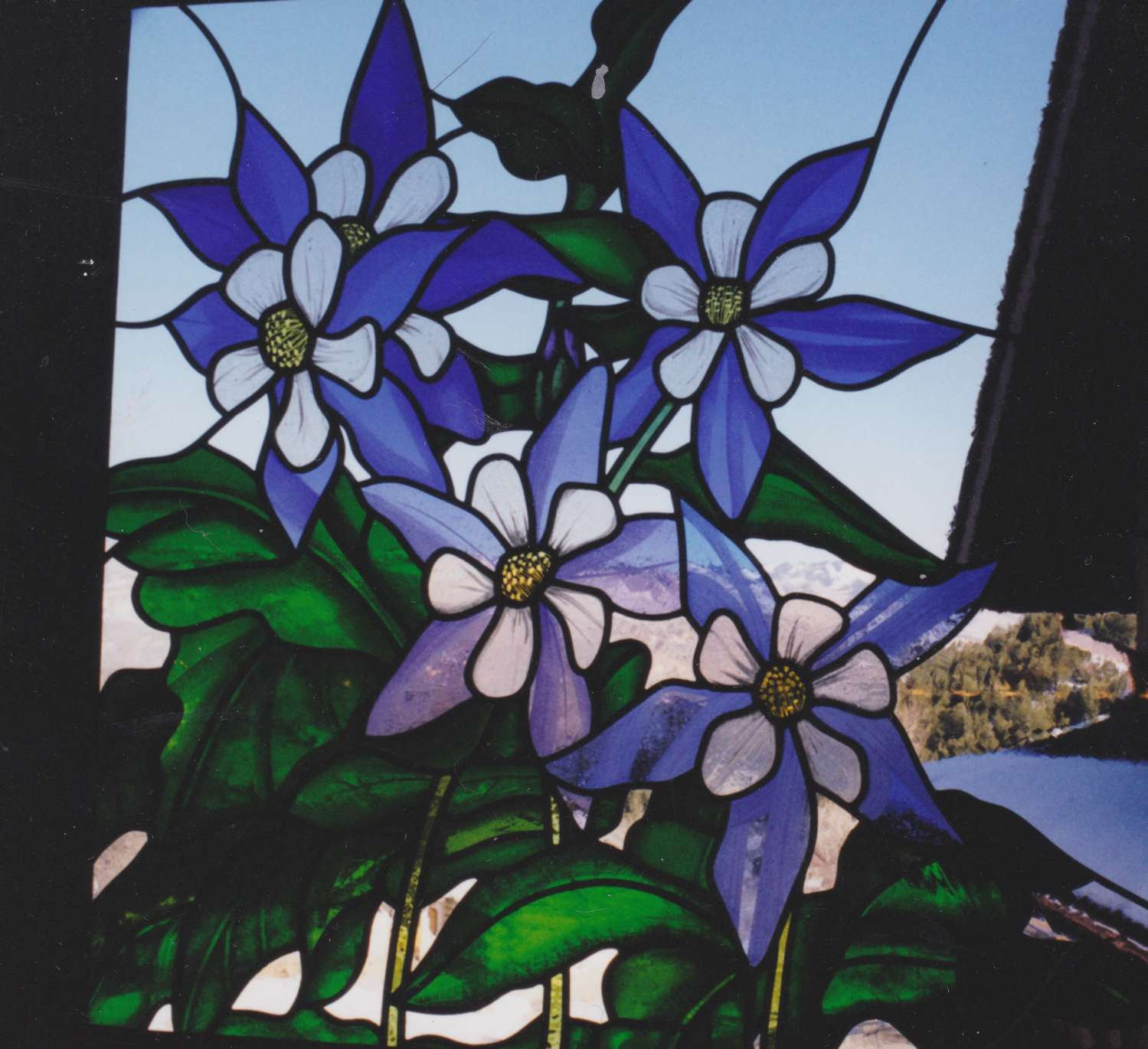 Columbine window