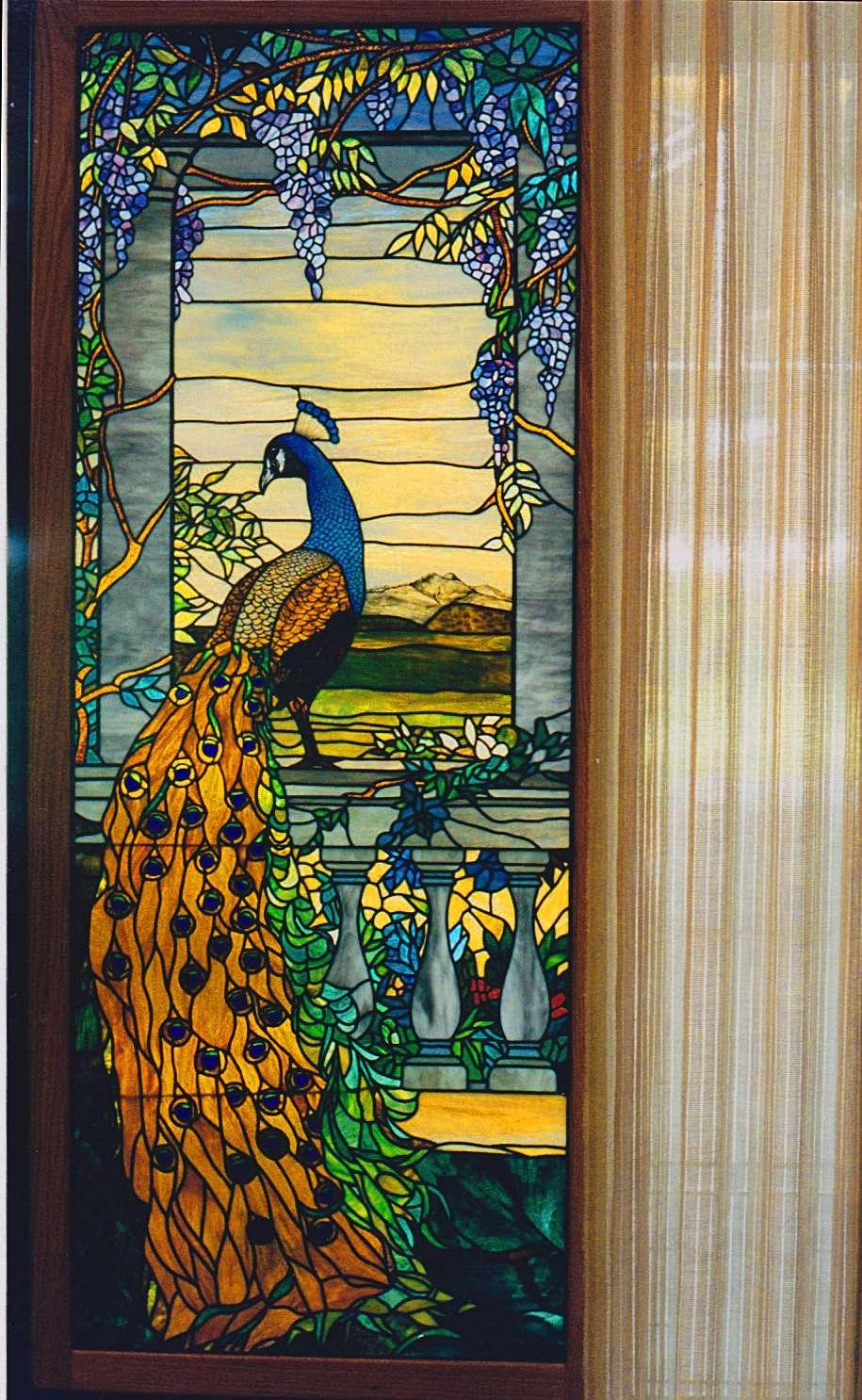 Long's Peak Peacock