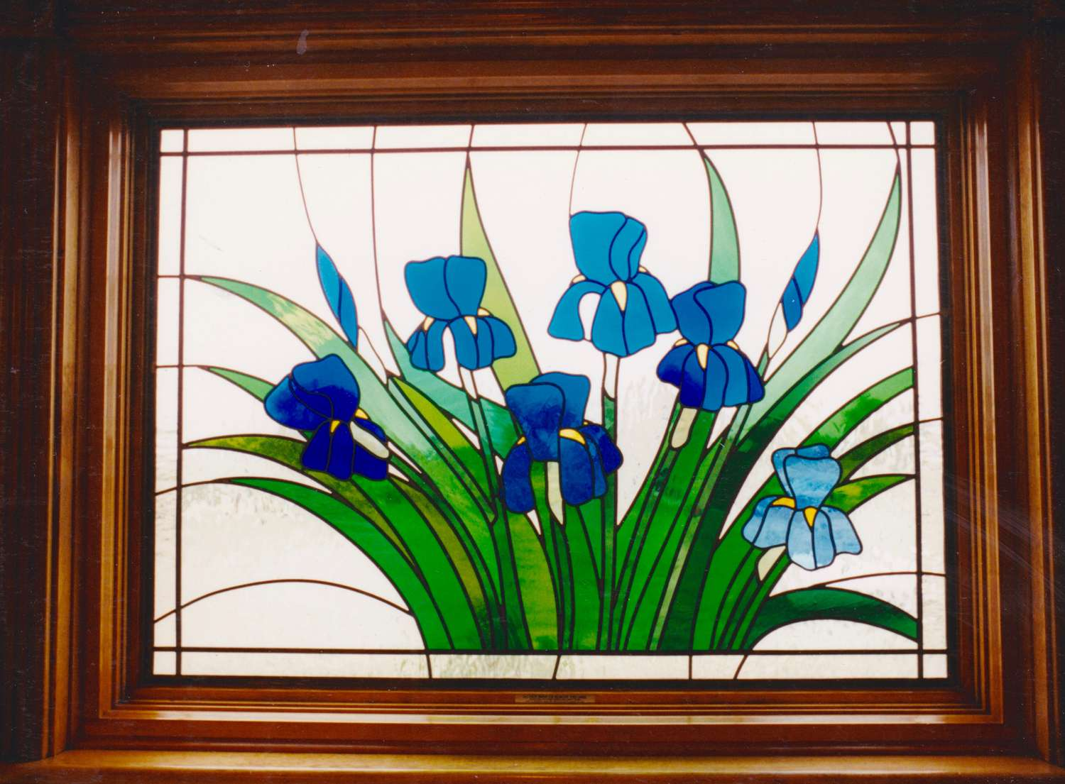 Van Gogh Iris window
